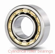 65 mm x 140 mm x 33 mm  NTN N313G1 Single row cylindrical roller bearings