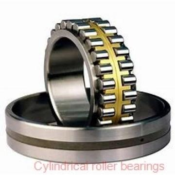 120 mm x 215 mm x 40 mm  NTN N224C3 Single row cylindrical roller bearings