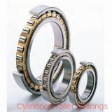 80 mm x 140 mm x 26 mm  NTN NJ216C3 Single row cylindrical roller bearings