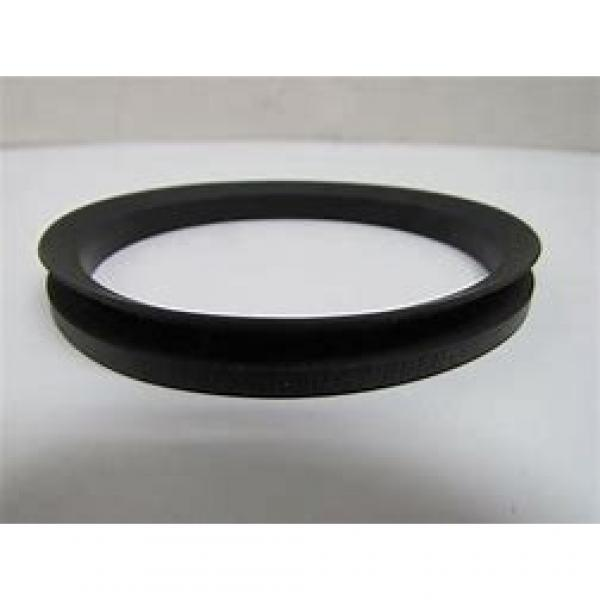 skf 1025017 Radial shaft seals for heavy industrial applications #1 image