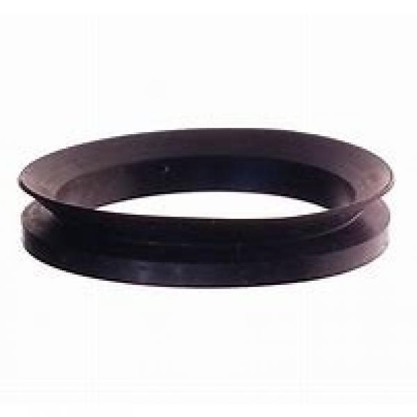 skf 20X30X5 HMS5 V Radial shaft seals for general industrial applications #1 image
